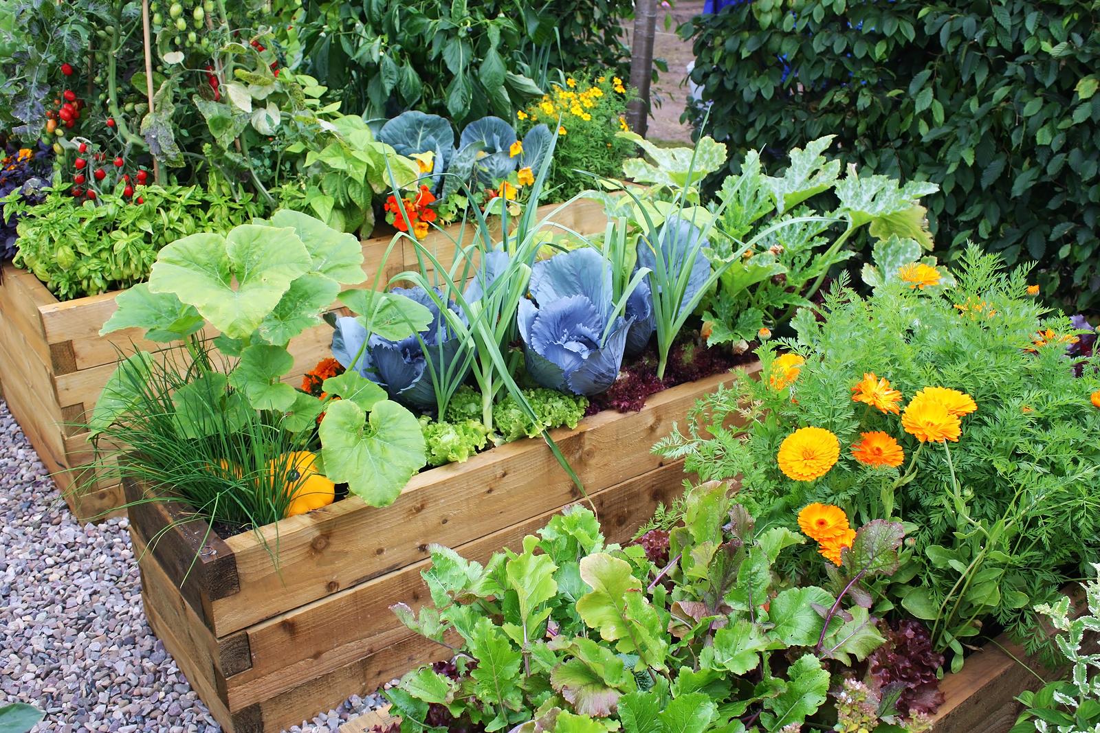preparing garden for spring planting, Gartenarbeit ideen